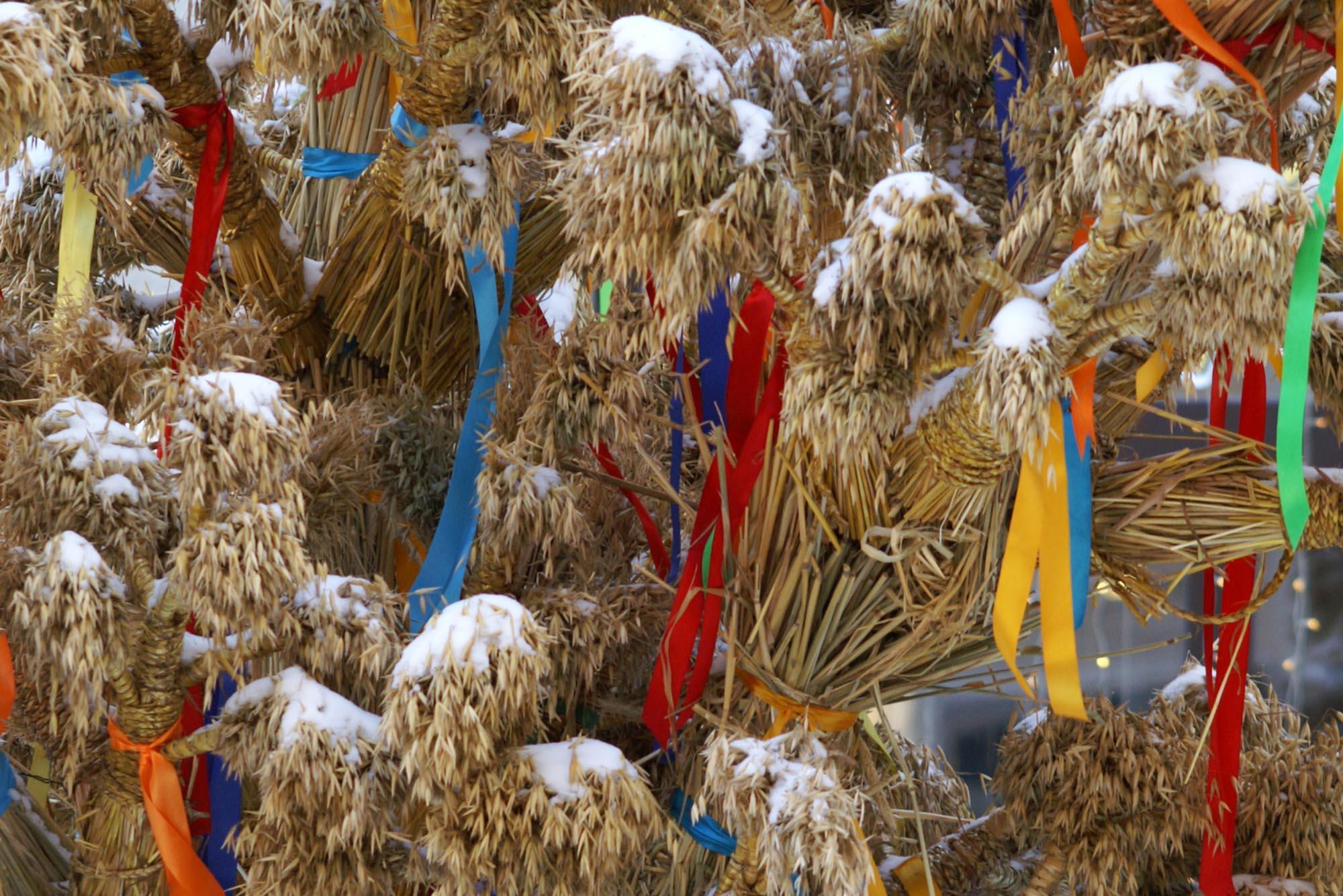 Дидух, Карпаты зимой